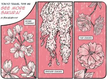Sakura1_colour_lowres